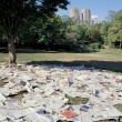 Ivana Keser Battista: Local-Global art newspapers (1993-2003) The exhibition installation of the Local newspapers, Central Park New York, 1997