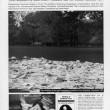 Ivana Keser Battista: Local-Global art newspapers (1993-2003) Local Newspapers, Cleveland, 1997